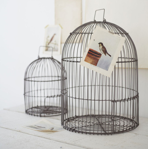 Two bird cages contemporary home decor by cox cox for Cage d oiseau decorative