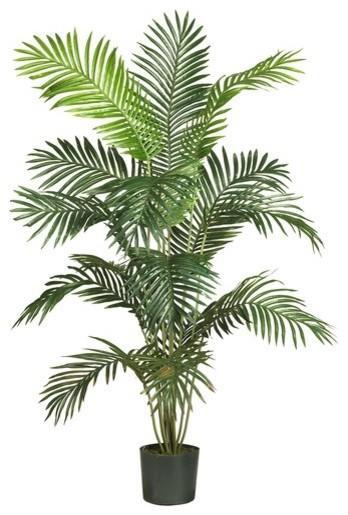 "72"" Paradise Palm Tree in Green modern-plants"