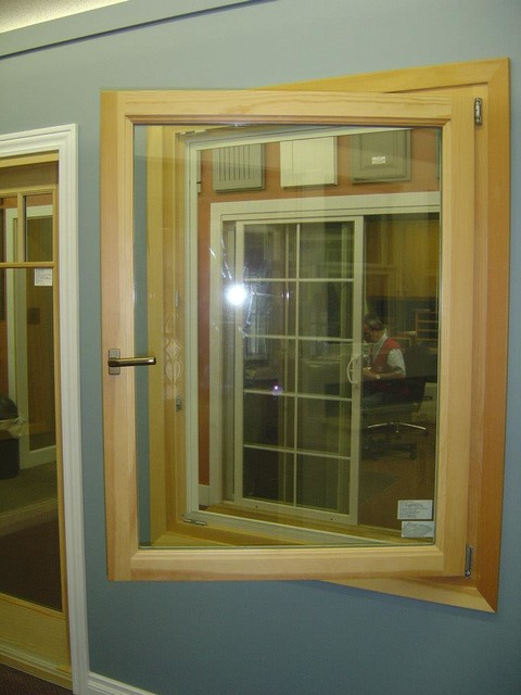 Showroom displays  windows