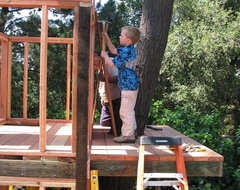 Tree Fort or Tree House - San Francisco Bay Area traditional