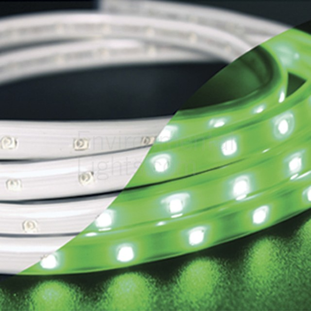 Green 120-TL60-19.7-GR Tape-Rope Hybrid LED Light contemporary-paintings