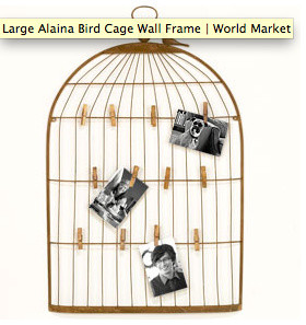 Large Alaina Bird Cage Wall Frame contemporary frames