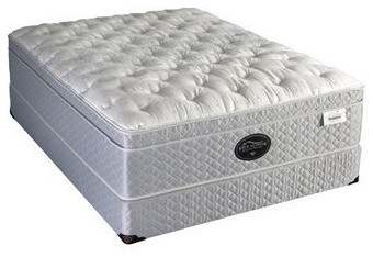Spring Air Back Supporter Four Seasons Box Top Mattress and Box Spring Set modern-beds