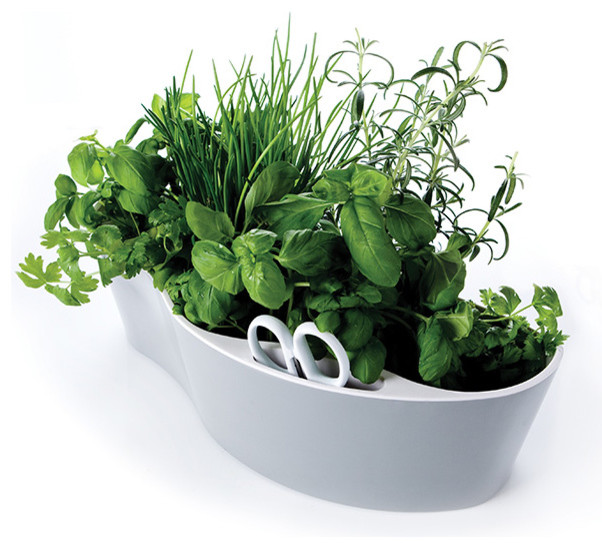 Kitchen Window Herb Planter: Original 1227 Table Light