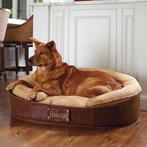 Dog Bedroom Furniture Bedroom Category