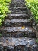 Spiritual Gardens (not religious) eclectic