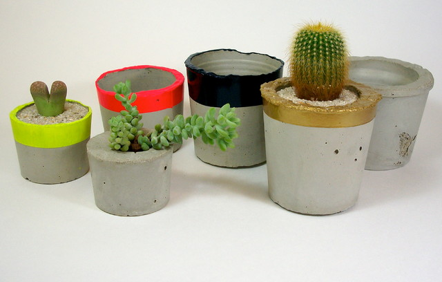Dachshund in the Desert modern-indoor-pots-and-planters