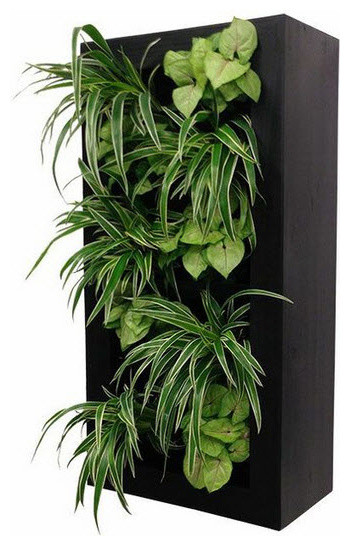 ... Living Wall Planter & Vertical Gardens modern-indoor-pots-and-planters