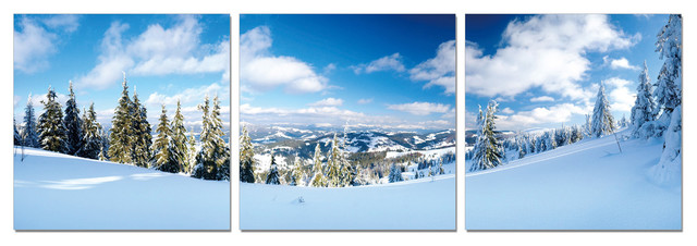 Ski Slope Print contemporary-prints-and-posters