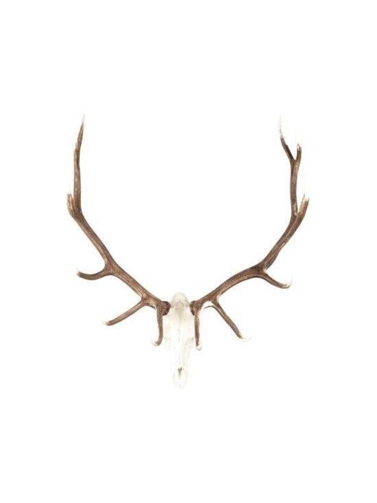 European Mount Elk Trophy -