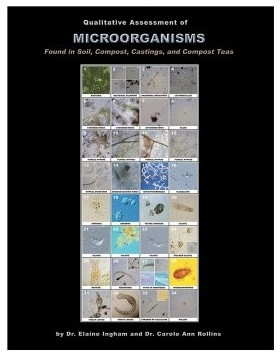 Microbe Manual - Qualitatively Assessing Soil Microorgan modern-gas-ranges-and-electric-ranges