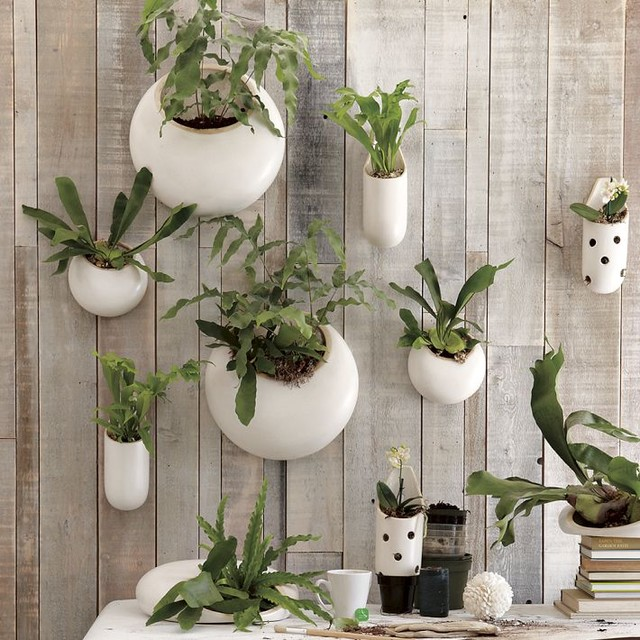 Shane Powers Ceramic Wall Planters contemporary indoor pots and planters