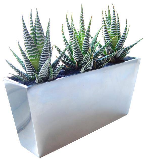 pin modern planters indoor modern planters indoor on pinterest