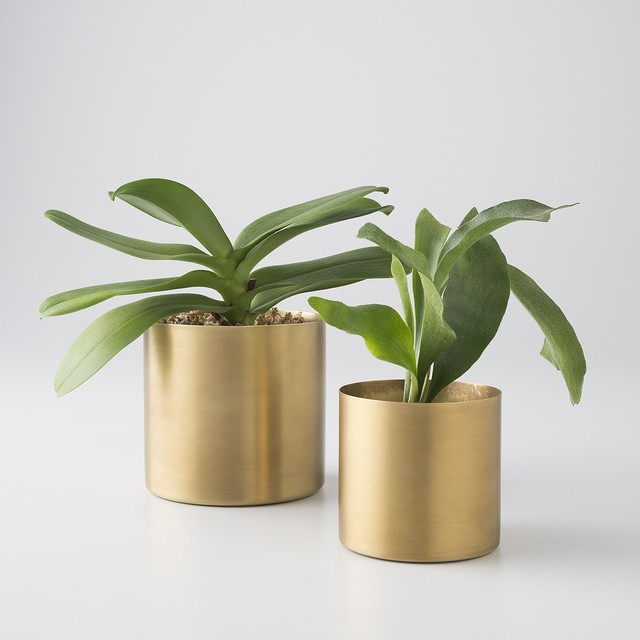 Brass Planter Modern Indoor Pots And Planters By