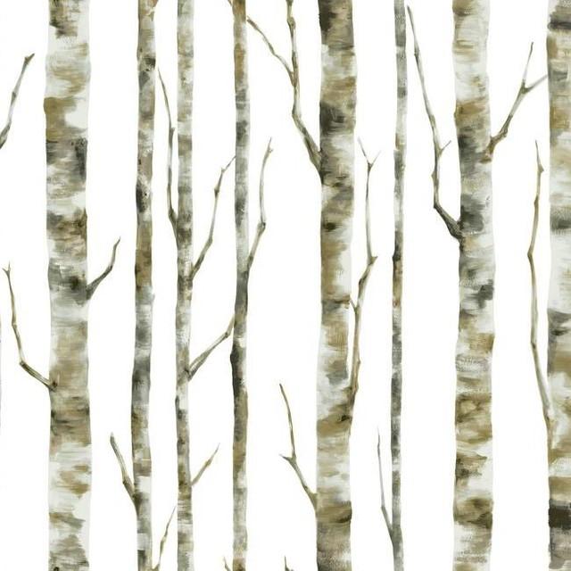 birch tree wallpaper traditional - photo #2