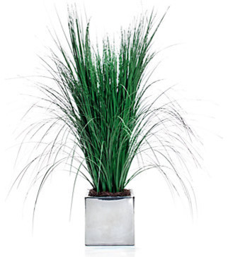 Potted Fountain Grass contemporary-artificial-plants-and-trees