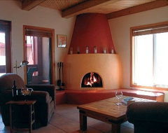 Beehive Fireplace Designs Need Paint Help For My Kiva Fireplace ...
