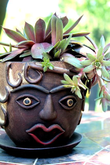 Fancy Hair! eclectic-plants