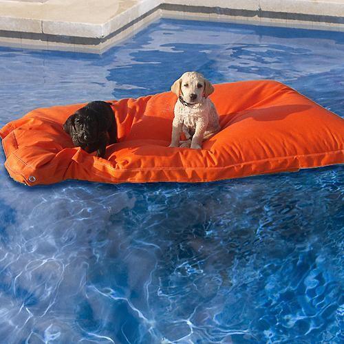 Pet Kai Pool Float - Frontgate Dog Bed eclectic-pet-supplies
