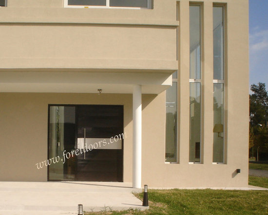 Modern front entry doors / contemporary front entry doors - Solid wood modern entry door with stainless steel stripe and stainless steel pull