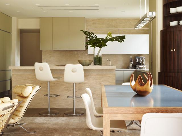 New York Modern contemporary-kitchen