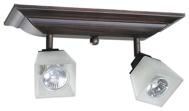 Dvi Lighting DVP7683ORB Two Light Track modern-track-lighting