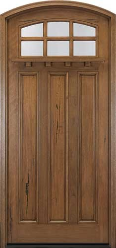 Craftsman arch-lite exterior door traditional front doors