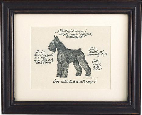 Giant Schnauzer Dog Print traditional-artwork