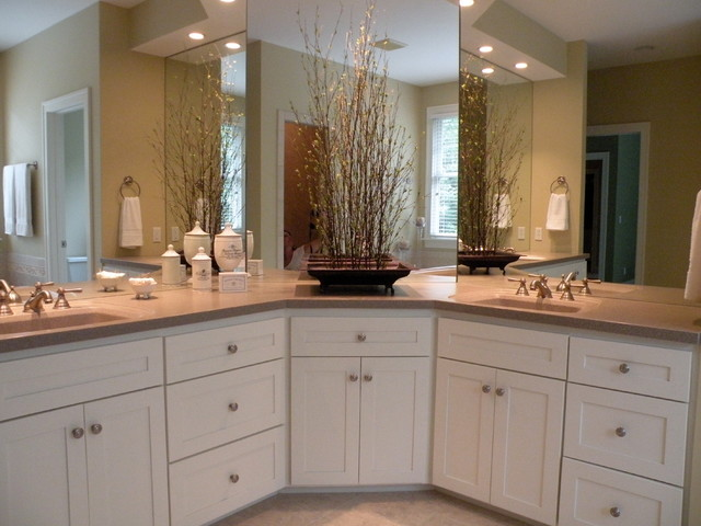 Real Estate Home Staging traditional-bathroom
