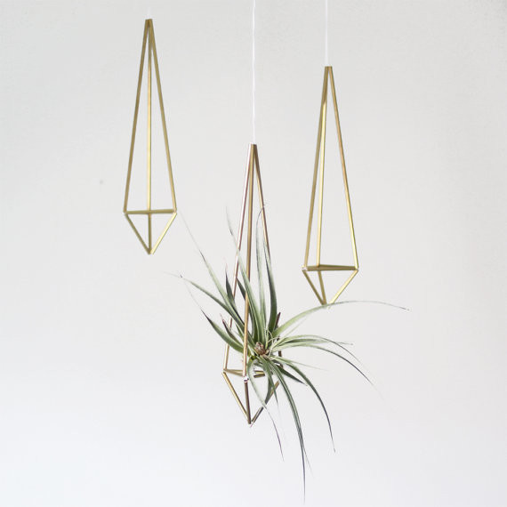 ... Plant Holder/Prism Ornament by AMradio modern-indoor-pots-and-planters