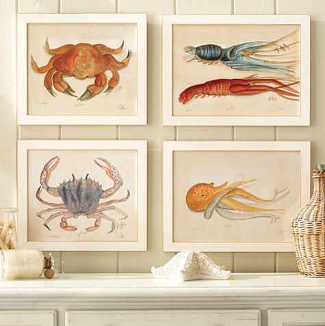Ocean Life Water Color Prints beach-style-prints-and-posters