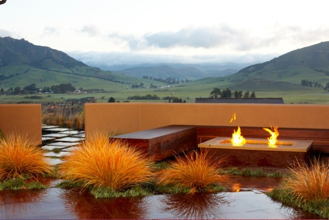 Anemanthele lessoniana new zealand wind grass for Landscape architecture new zealand