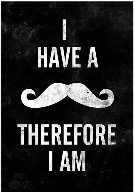 Mustache Quote Print Typography Poster A3 By handz contemporary-novelty-signs
