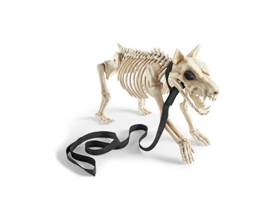 """Grandin Road - Small Halloween Skeleton Dog - Lifelike skeleton dogs Halloween figures with detachable fabric leash. Crafted from durable all-weather plastic to scare up compliments for Halloweens to come. A natural to become the best friends of our 5'H Skeleton or siblings to our 21/2"""" High Skeleton Dog on Leash. Get a whole pound full and form your own pack. Minor assembly required. Thrill them to the bone with our frightfully realistic Skeleton Dogs on Leashes Halloween figures. Allow our chilling canines to stand guard by the bowl of treats, or take them for a """"walk"""" at your neighborhood dog park, where you're sure to have it all to yourself. Very easy to care for, they never bark or eat a thing – apparently.  .  .  .  . . A Grandin Road exclusive."""