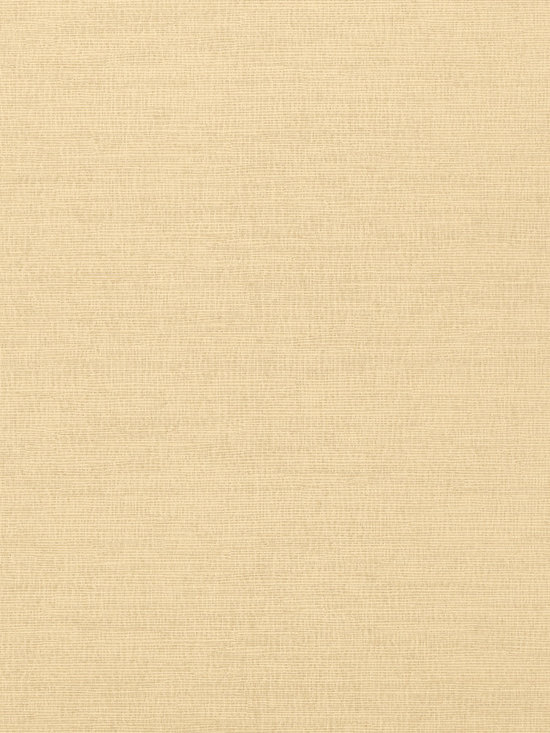 Texture Resource Volume 4 - Flat Shots - Coastal Sisal wallpaper in Sand  (T14109) from Thibaut's Texture Resource Volume 4 Collection