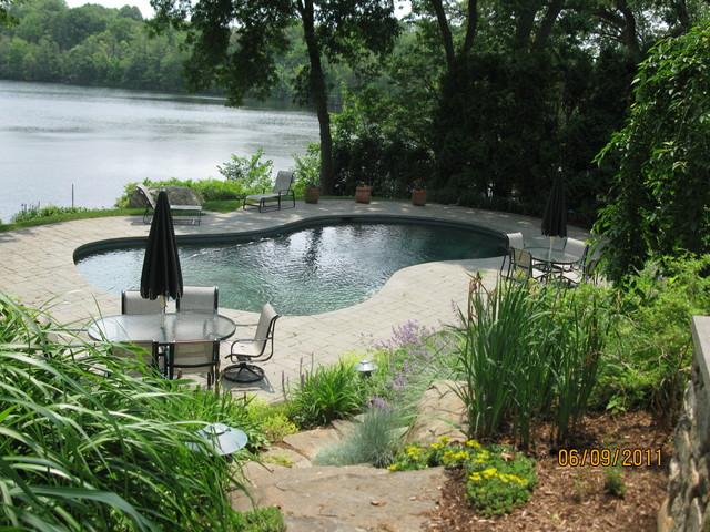 Arlington residence contemporary-pool