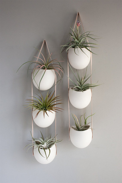 3 Drop Porcelain and Leather Hanging Container by Fashioned By contemporary-indoor-pots-and-planters