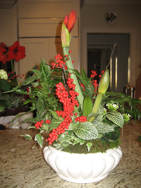 Holiday Arrangements traditional-plants