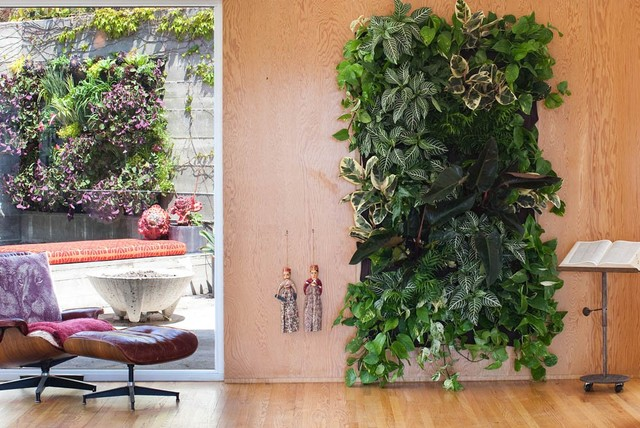 LIVING WALL PLANTER - Modern - Indoor Pots And Planters - other metro - by Boxhill