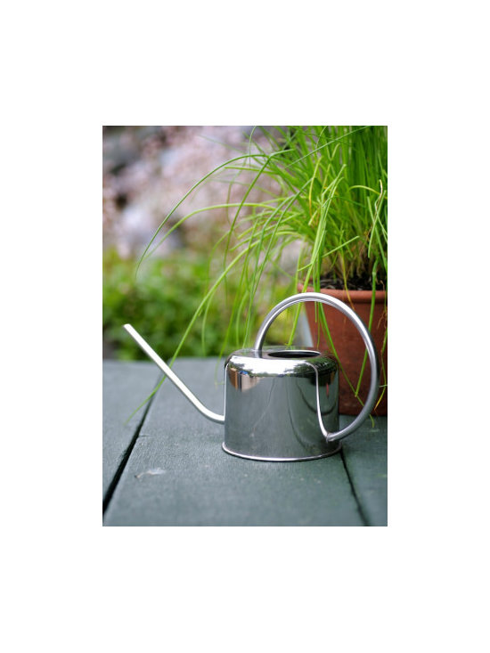 Small Stainless Steel Watering Can -