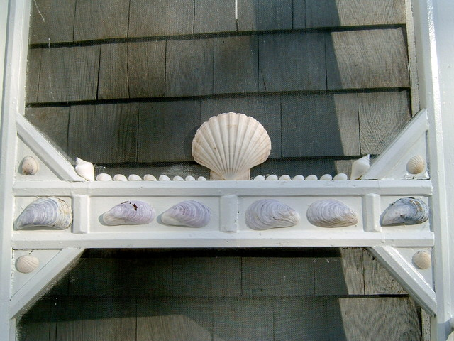 Old screen door with sea shells glued on it eclectic-porch