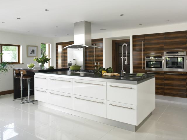 High gloss white kitchens modern kitchen cabinets for Houzz modern kitchen