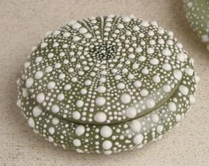Dark Green Small Sea Urchin Box tropical-home-decor