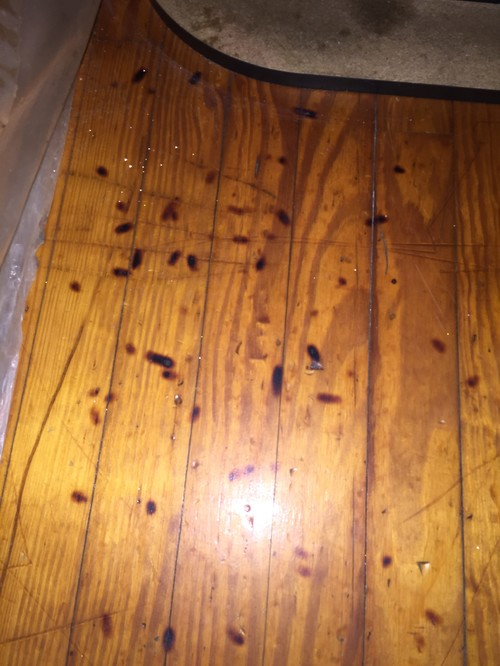 How To Get Cigarette Burns Out Of Wood Flooring