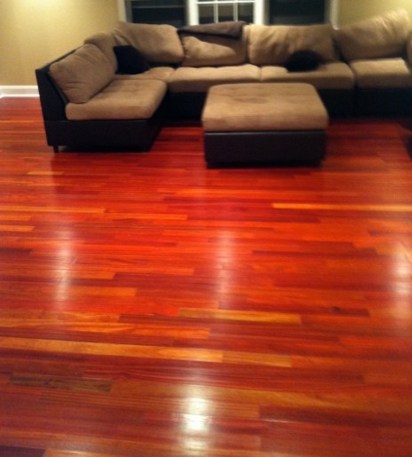 Bloodwood Hardwood Flooring Contemporary Hardwood