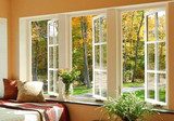 Energy Efficiency traditional windows and doors