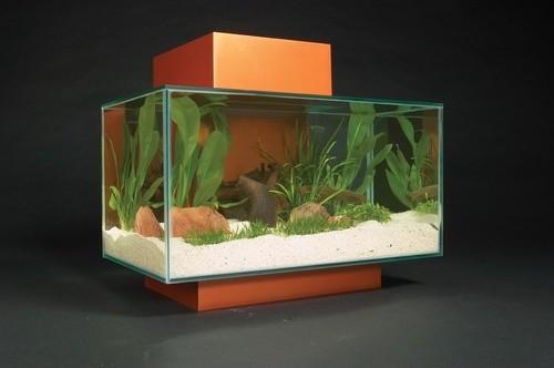 Fluval edge 6 gallon aquarium set modern home decor for Modern fish tanks