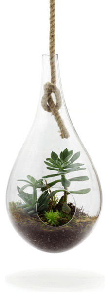 Hanging Terrarium modern indoor pots and planters