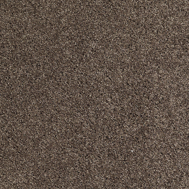 New York Ave II Carpet Walnut Contemporary Carpet Flooring