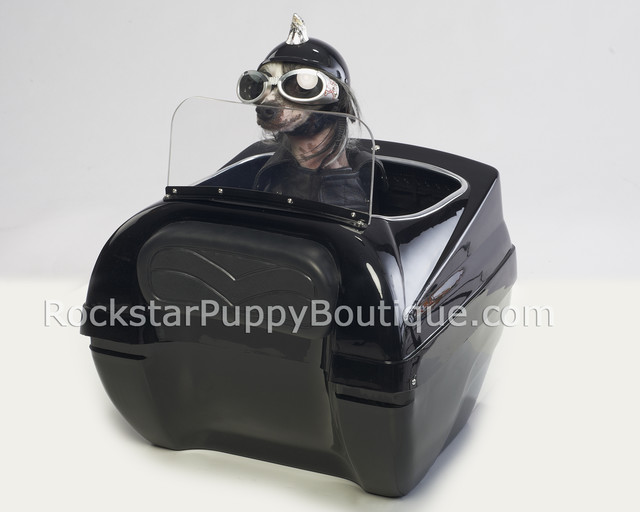 Small dog carriers for motorcycles for pinterest